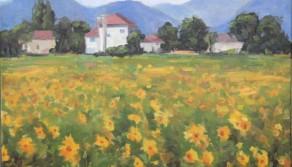 Tuscan Sunflowers, 24x30